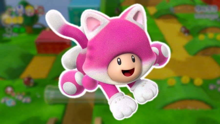 Rumour: Hidden File Suggests Toadette Was Planned As A Playable Character In Super Mario 3D World 1